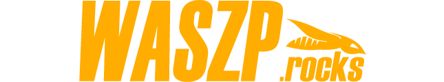 Foiling WASZP logo