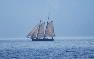book and pay for a trip on a schooner